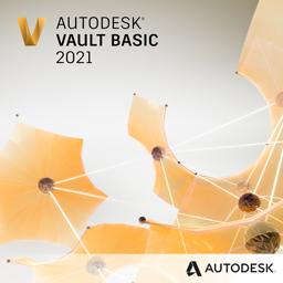 Vault Basic 2021